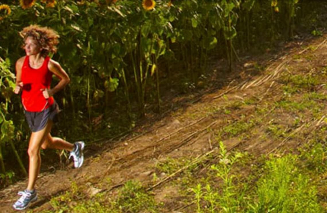 Les rondes charolaises (trail)
